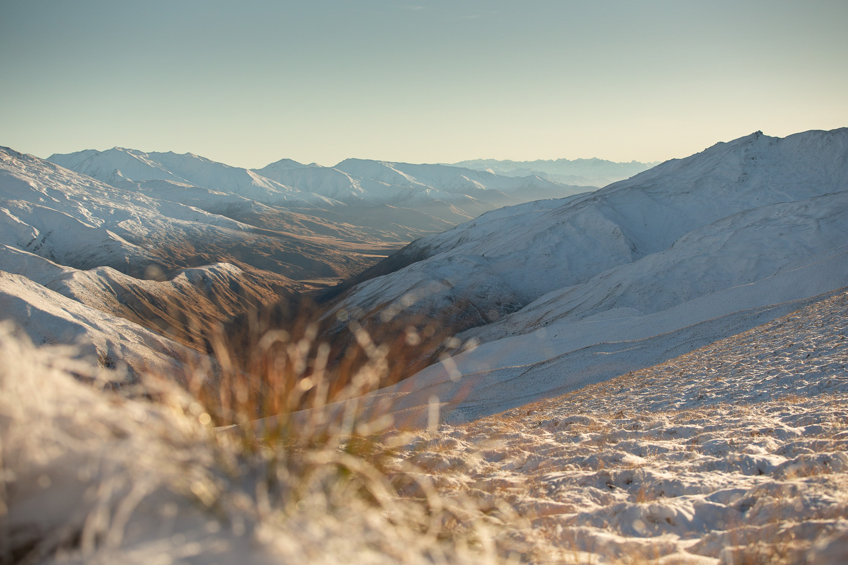 Snow on red tussock in Cardrona Valley by Paul Green Photographer