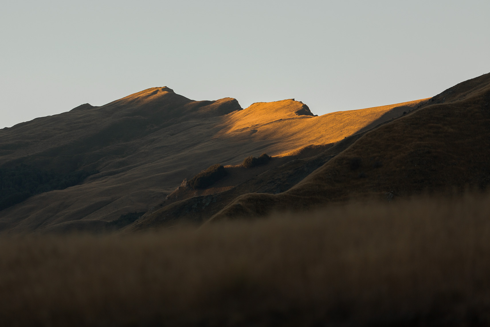 Last light of evening plays across the New Zealand tussock hills by Paul Green Photographer