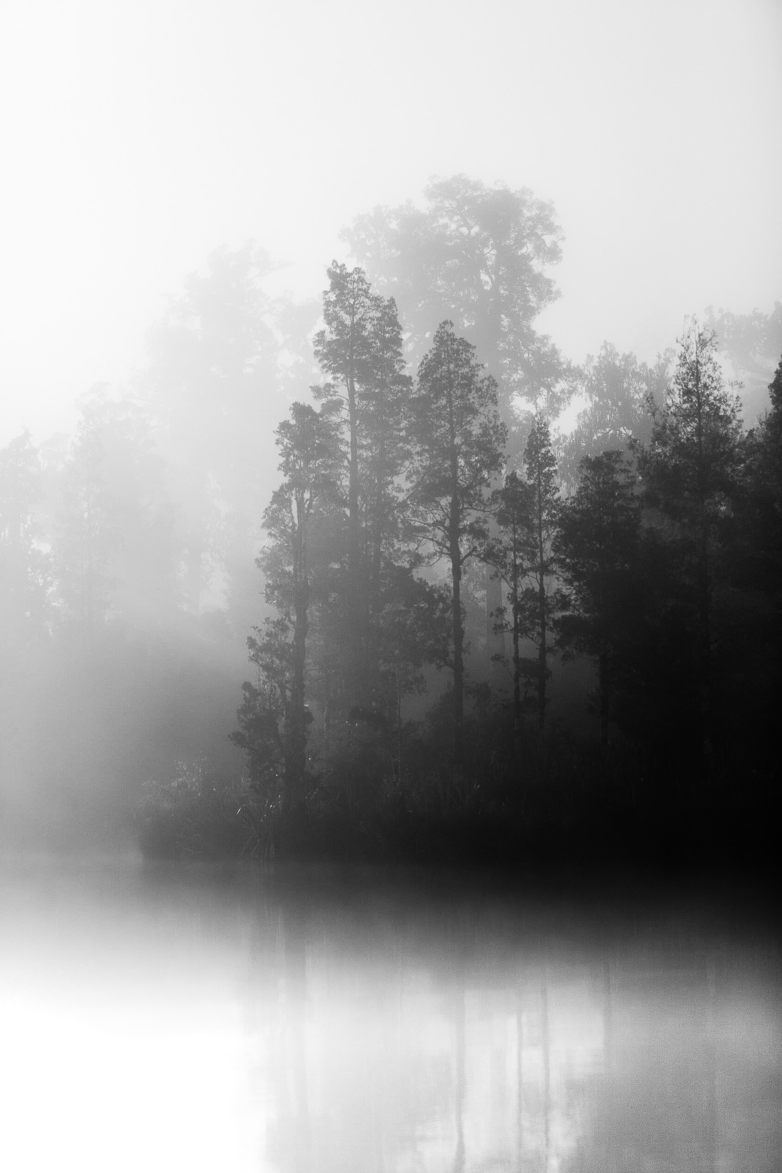 Mist on the waters of Lake Mapourika by Paul Green Photographer