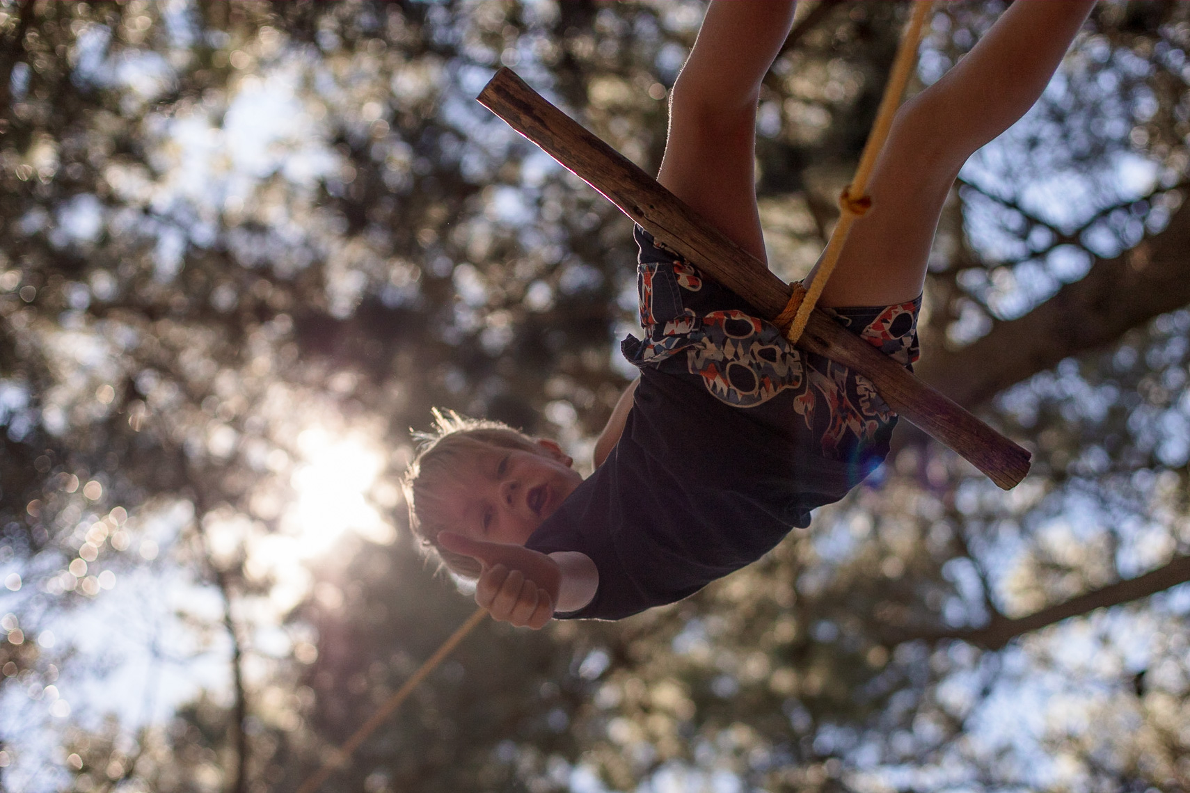 Low angle shot of child swinging from tree backlit by the sun by Paul Green Photographer